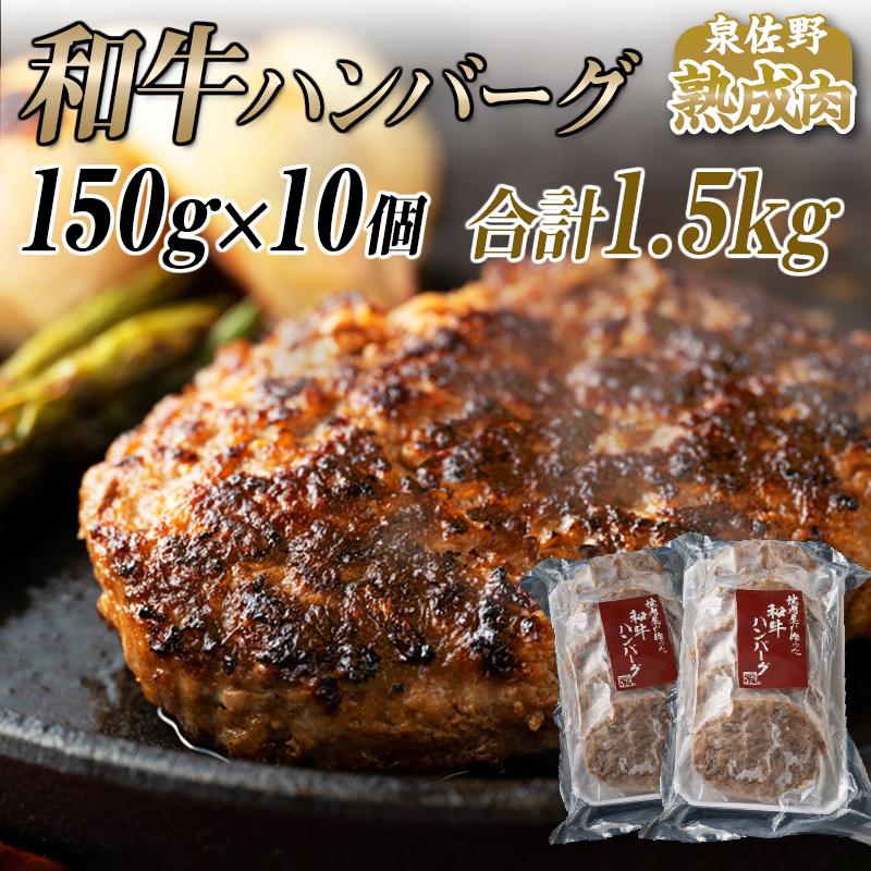 010B582 国産熟成和牛100%ハンバ