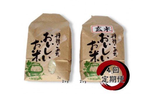 Z-3.【定期便】旧笹神村産 コシヒカリ 「 白米 2kg + 玄米 2kg 」×4回定期便