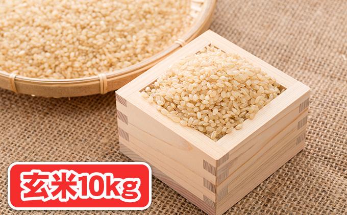 令和3年新米(玄米10kg)エコファーマーの特別栽培米 水主米(みずしまい)【ご祈祷米付き】