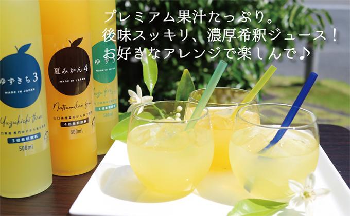 爽やか柑橘の濃厚ジュースセットC