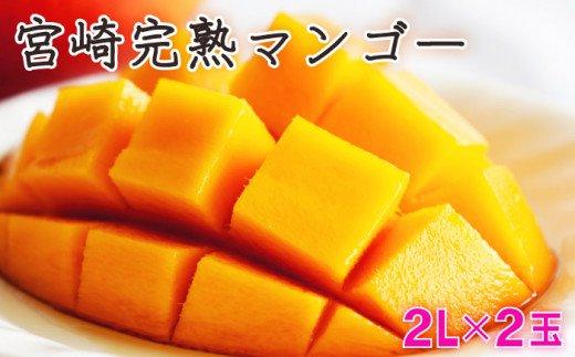 KU019 <数量限定>宮崎完熟マンゴー(