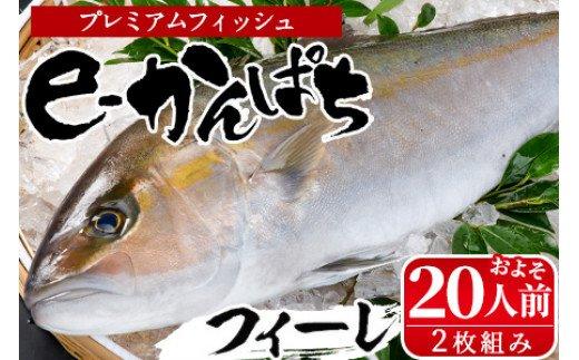 AG-CD2 東京オリンピック供給資格「AEL(養殖エコラベル)」認証取得のカンパチ!活き〆プレミアムフィッシュ「e-かんぱち」フィーレ(お刺身約20人前)【丸栄水産】
