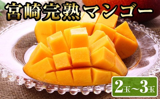 KU028 <数量限定>宮崎完熟マンゴー