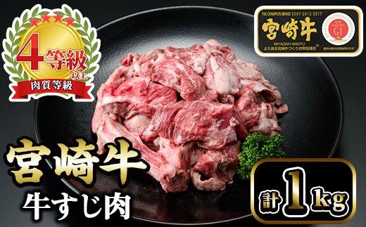 KU046 <宮崎牛>牛すじ肉500g×2袋(計1kg)美味しい牛肉をご家庭で【KU046】