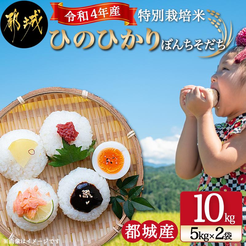 都城産ひのひかり特別栽培米「ぼんちそだち」10kg(5kg×2袋)_MJ-0403