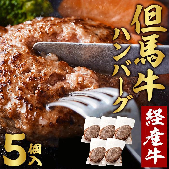 009AA01N.但馬牛 経産牛 ハンバーグ(150g×5個)但馬牛 牛肉 100%