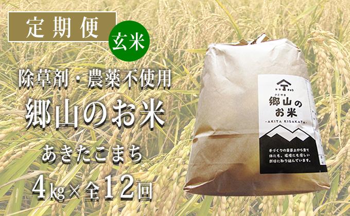 秋田県産あきたこまち(玄米)郷山のお米4kg(2kg×2袋)×12ヶ月定期便(12回 12ヵ月)