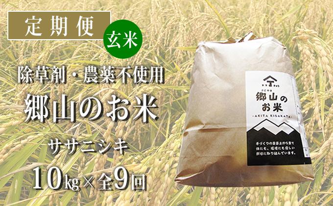 秋田県産ササニシキ(玄米)郷山のお米10kg(5kg×2袋)×9ヶ月定期便(9回 9ヵ月)