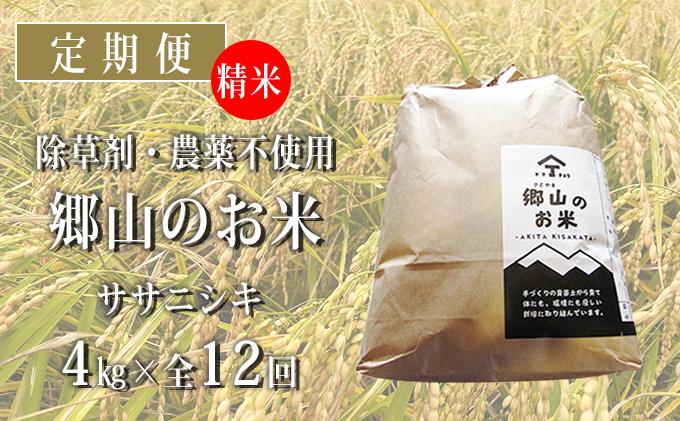 秋田県産ササニシキ(精米)郷山のお米4kg(2kg×2袋)×12ヶ月定期便(12回 12ヵ月)