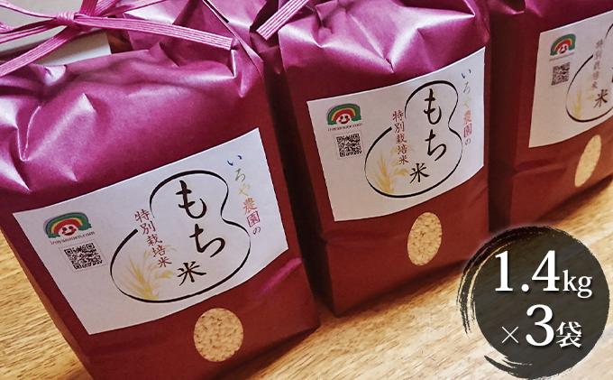 特別栽培米 日進市産もち米 1.4kg×3