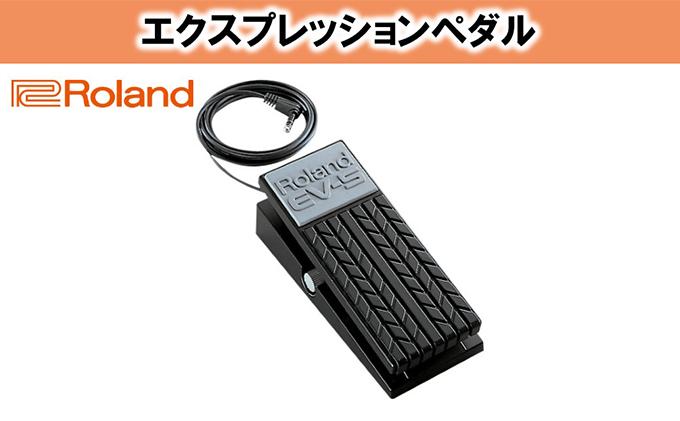 【Roland】エクスプレッションペダル/EV-5【配送不可:離島】