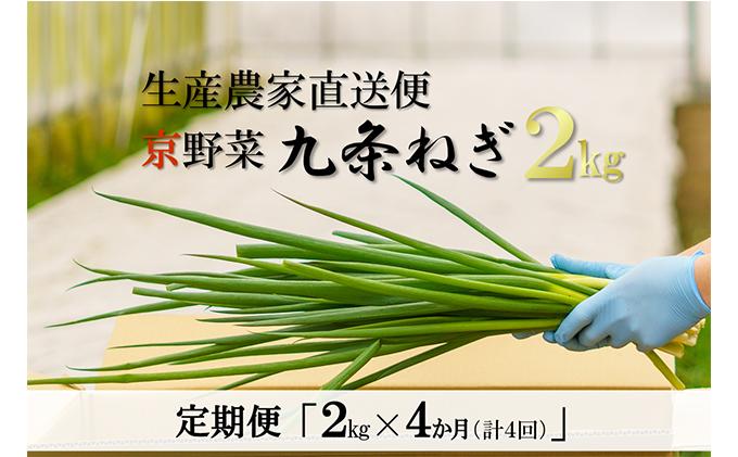 【4か月定期便】生産農家直送 京野菜・九条ねぎ 2kg×4回