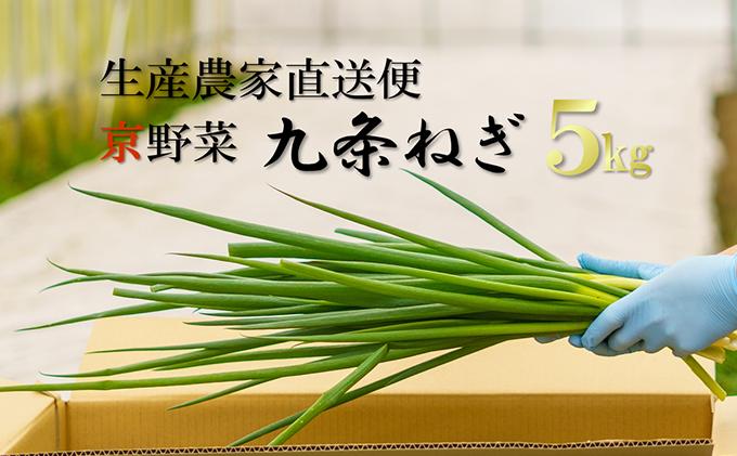 生産農家直送 京野菜・九条ねぎ 約5kg