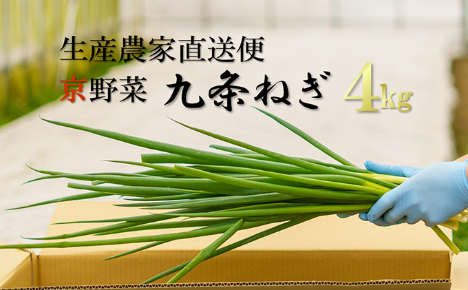 生産農家直送 京野菜・九条ねぎ 約4kg