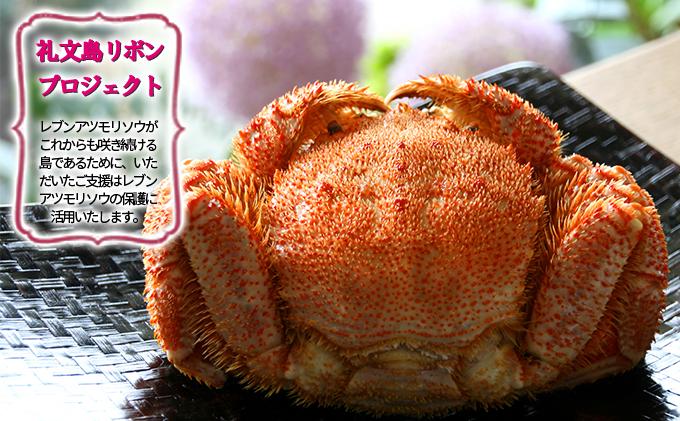 【礼文島リボンプロジェクト】北海道礼文島産  急速冷凍特大毛蟹(900g~1kg)1尾