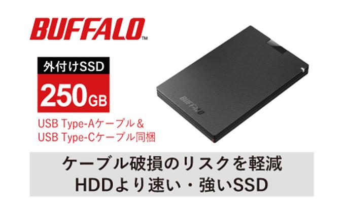 BUFFALO/USB3.2(Gen1)ポータブルSSD TypeA&C 250GB