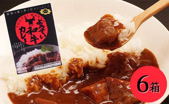北海道産【ようてい和牛カレー】6箱セット