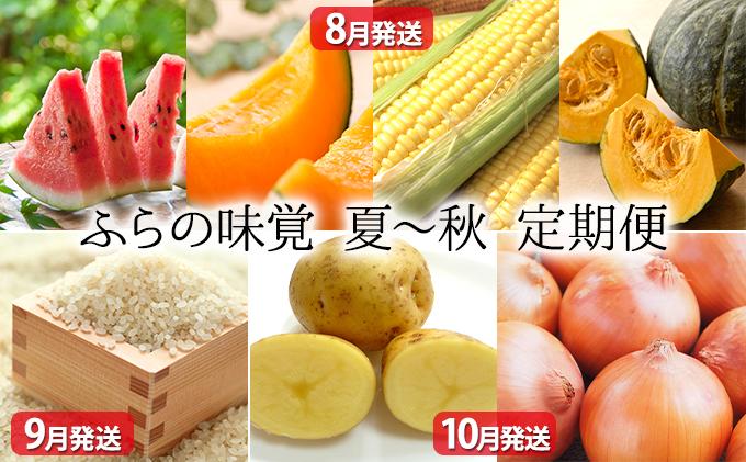 北海道上富良野町のふるさと納税 ふらの味覚 夏~秋野菜 定期便セット