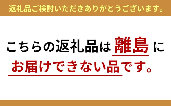 岐阜県瑞穂市のふるさと納税 LEDフラッシュライト  LFL-02