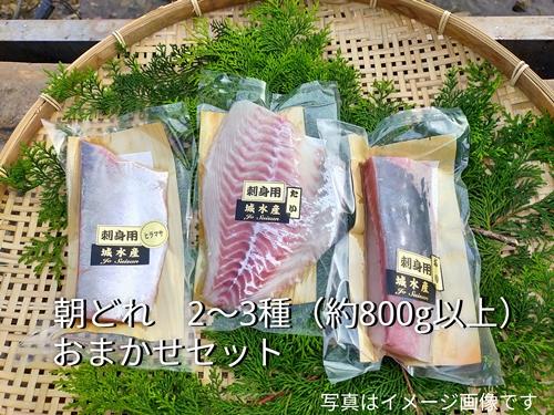 (冷蔵)伊勢志摩産 朝どれ 3種 お刺身セット/城水産 鯛 鰤 たい ブリ 新鮮 真空 海の幸 三重県