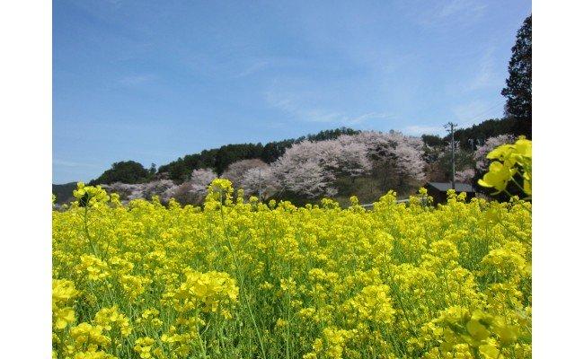 三重県多気町のふるさと納税 SM‐01 極上の農村おせち