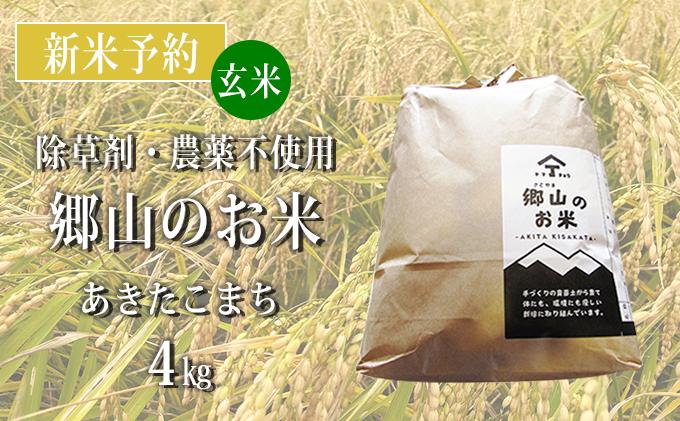 【新米予約】農薬不使用のあきたこまち(玄米)「郷山のお米」4kg(2kg×2袋)