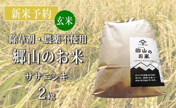 【新米予約】農薬不使用のササニシキ(玄米)「郷山のお米」2kg