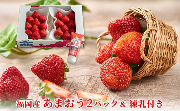 福岡産 あまおう 苺 2パック&練乳(コンデンスミルク)1個【配送不可:離島】