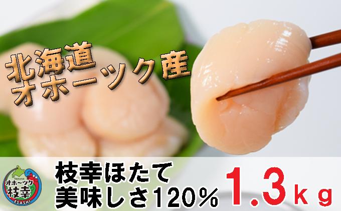 冷凍ほたて貝柱1.3kg【枝幸ほたて】海洋食品