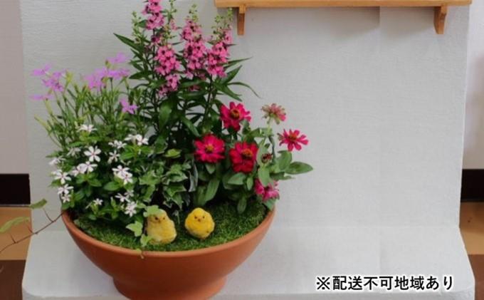 季節のお花寄せ植え(ガーデン風)※お任せ動物フィギア付き【配送不可:沖縄・離島】