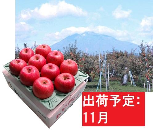 11月  サンふじりんご「特A」約3kg