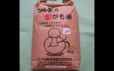 愛がも米(コシヒカリ)5kg[AI002ci]