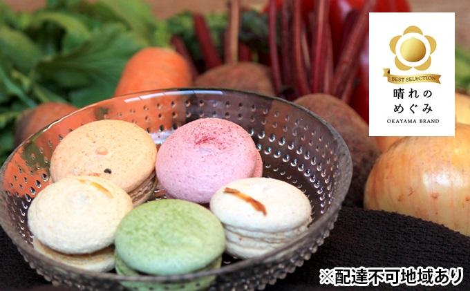 卵不使用 野菜のマカロン15個入(5種×3個)【配達不可:離島】