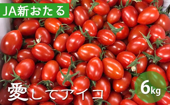 北海道仁木産ミニトマト【愛してアイコ】6kg