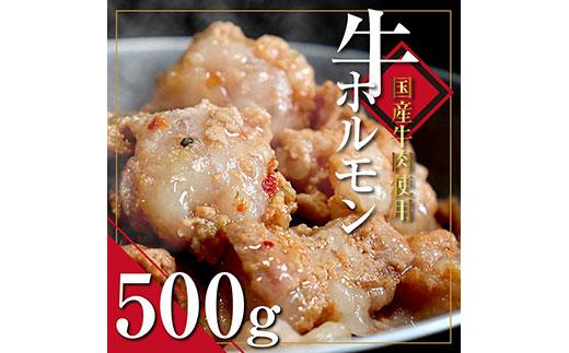 国産牛ホルモンタレ漬け500g<高知市共通返礼品>