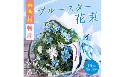 《先行予約》芸西村特産ブルースター花束(約15本程度の花束)