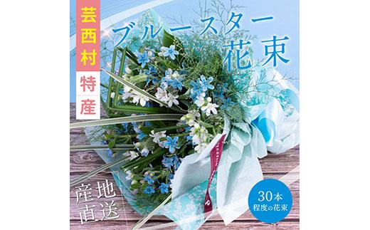 《先行予約》芸西村特産ブルースター花束(約30本程度の花束)