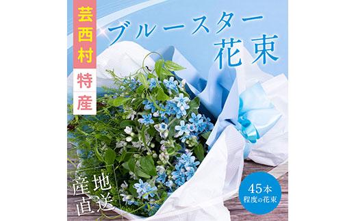 《先行予約》芸西村特産ブルースター花束(約45本程度の花束)