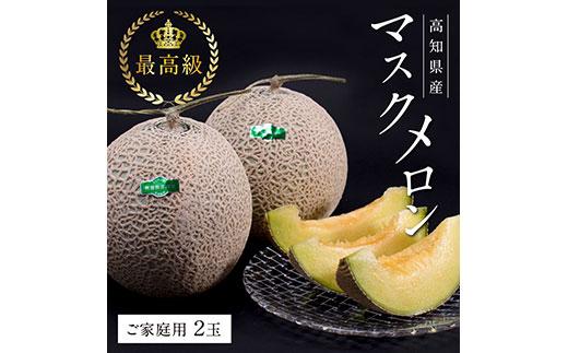 コロナ 緊急支援 高知県産 最高級マスクメロン(ご家庭用)2玉入〈南国市共通返礼品〉ハウス栽培のため、年中お楽しみいただけます