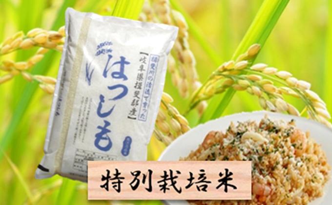 特別栽培米★白米5kg【ハツシモ】