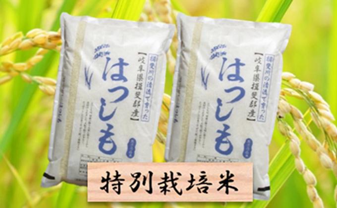 特別栽培米★精米20kg(分搗き可)または玄米22kg【ハツシモ】