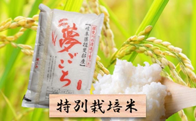 特別栽培米★精米10kg(分搗き可)または玄米11kg【夢ごこち】