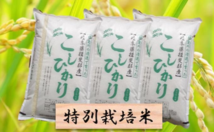 特別栽培米★精米30kg(分搗き可)または玄米33kg【コシヒカリ】
