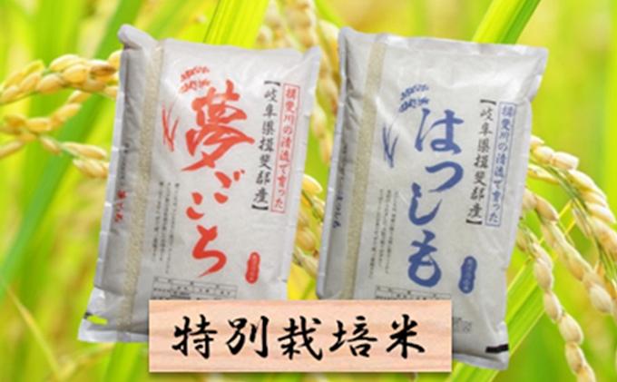 特別栽培米★精米20kg(分搗き可)または玄米22kg【夢ごこち・ハツシモ】