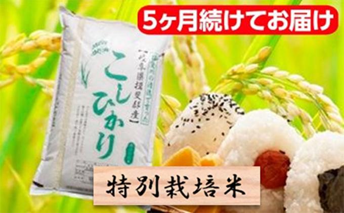 特別栽培米★[頒布会]5ヶ月★毎月白米5kg【コシヒカリ】