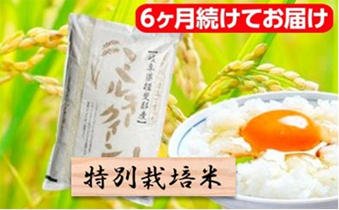 特別栽培米★[頒布会]6ヶ月★毎月白米5k