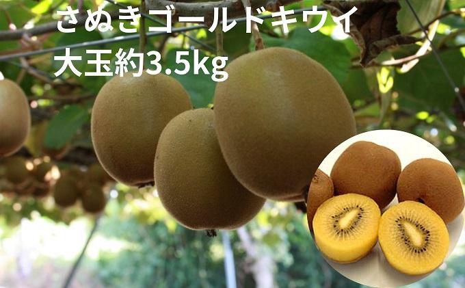 さぬきゴールドキウイ 大玉約3.5kg