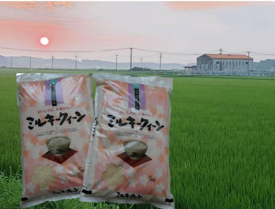 TC‐0412 特別栽培米の新米ミルキーク