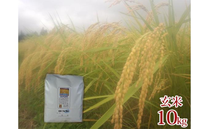 【令和三年産】栽培期間中農薬不使用 佐渡産コシヒカリ 玄米10kg