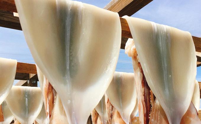 青森県鰺ヶ沢町のふるさと納税 青森県鰺ヶ沢町 生干しイカ4枚(1枚約200g×4枚)、炭火焼きイカ4パックセット※ご入金確認後 3ヶ月以内の発送になります。  青森 イカ いか 国産 魚介